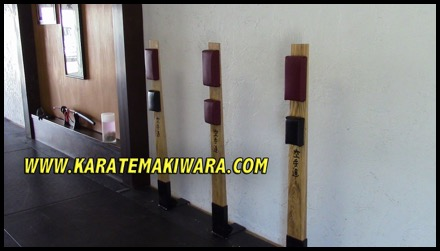 Floor Mounted Makiwara 16